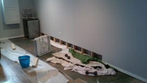 Before Basement Waterproofing & Sump Pump Installation | Riverside Alabama